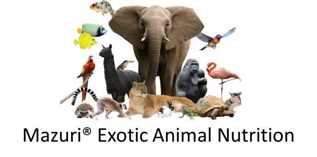 Job Opportunity: Mazuri Exotic Animal Nutritionist