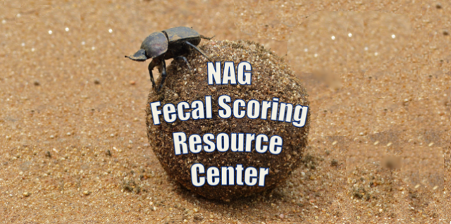 Fecal Condition Scoring Resource Center