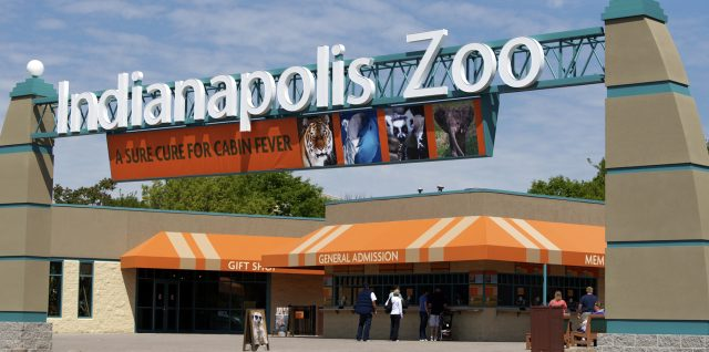 Indy Zoo: Nutrition Technician